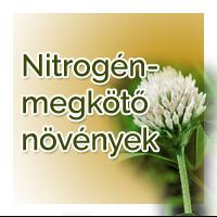 vetomagajanlatok-nyari_nitrogenmegkoto