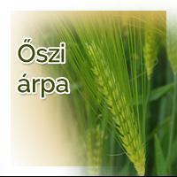 vetomagajanlatok_osziarpa