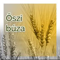 vetomagajanlatok_oszibuza