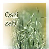 vetomagajanlatok_oszizab